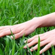 prepare-your-lawn-for-winter-fertilizer-sod.jpg