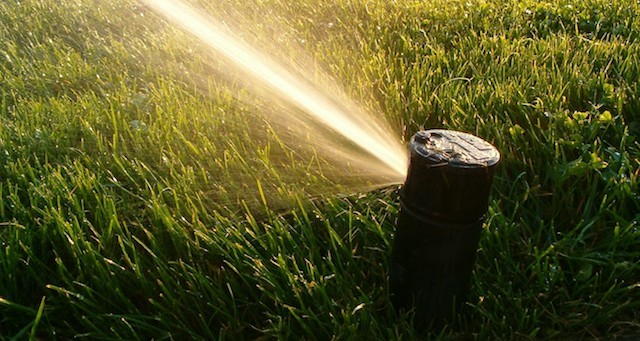 Watering-Lawn-During-Fall