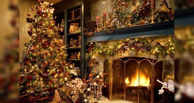 christmas-tree-mississauga