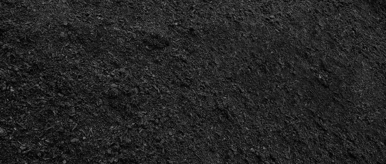 overseeding-soil