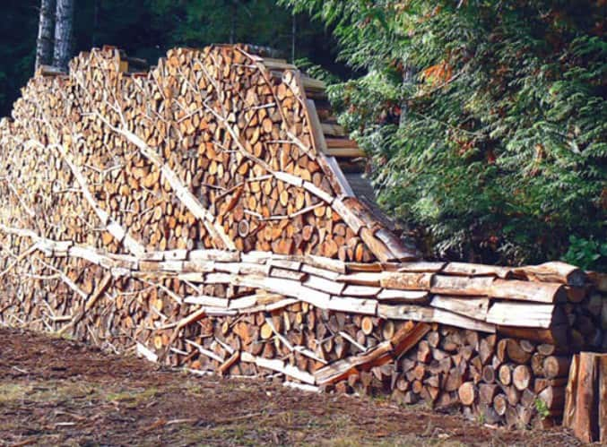 stacking-firewood-toemar-meta-tree