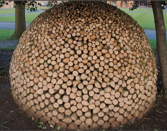 stacking-firewood-toemar-michael-buck